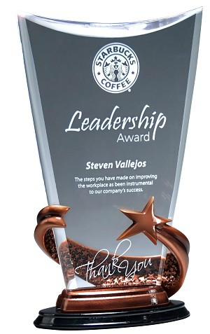 Acrylic award with bronze wrap around star